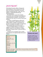 Lengua Materna Español Quinto grado página 093