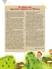 Lengua Materna Español Quinto grado página 106
