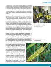 Geografía Quinto grado página 065