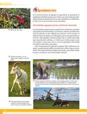 Geografía Quinto grado página 110