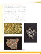 Geografía Quinto grado página 115