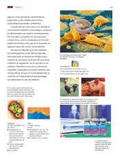 Ciencias Naturales Sexto grado página 029