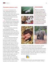 Ciencias Naturales Sexto grado página 035