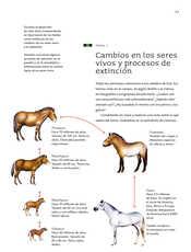 Ciencias Naturales Sexto grado página 053
