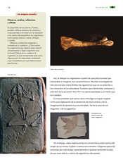 Ciencias Naturales Sexto grado página 054