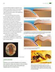 Ciencias Naturales Sexto grado página 056