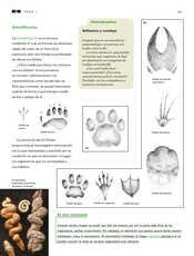 Ciencias Naturales Sexto grado página 059