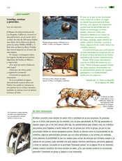 Ciencias Naturales Sexto grado página 062