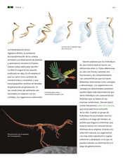 Ciencias Naturales Sexto grado página 063