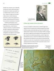 Ciencias Naturales Sexto grado página 064