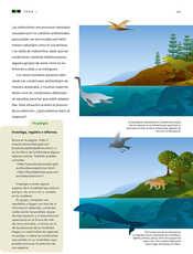 Ciencias Naturales Sexto grado página 065