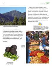 Ciencias Naturales Sexto grado página 070