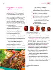 Ciencias Naturales Sexto grado página 090