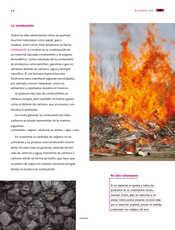 Ciencias Naturales Sexto grado página 098