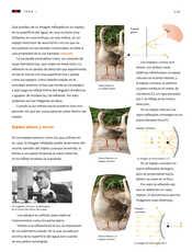 Ciencias Naturales Sexto grado página 115