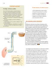 Ciencias Naturales Sexto grado página 116