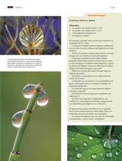 Ciencias Naturales Sexto grado página 119