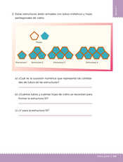 Desafíos Matemáticos Sexto grado página 141