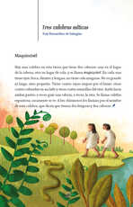Lengua Materna Español Lecturas Sexto grado página 088