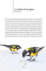 Lengua Materna Español Lecturas Sexto grado página 122
