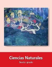 Ciencias Naturales Sexto grado
