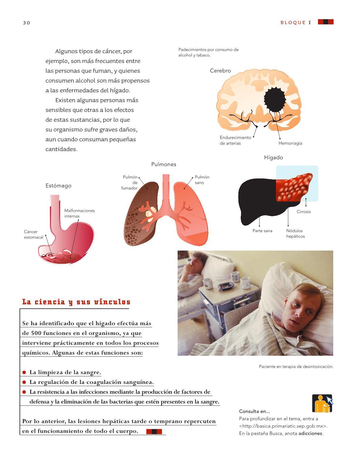 Libro sep ciencias naturales quinto grado 2012 pdf
