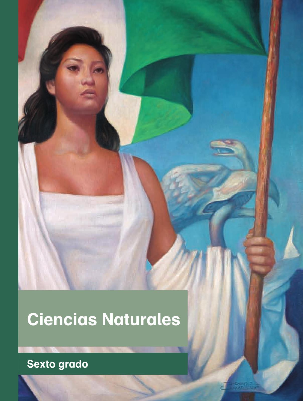 Ciencias NaturalessextoPagina 1