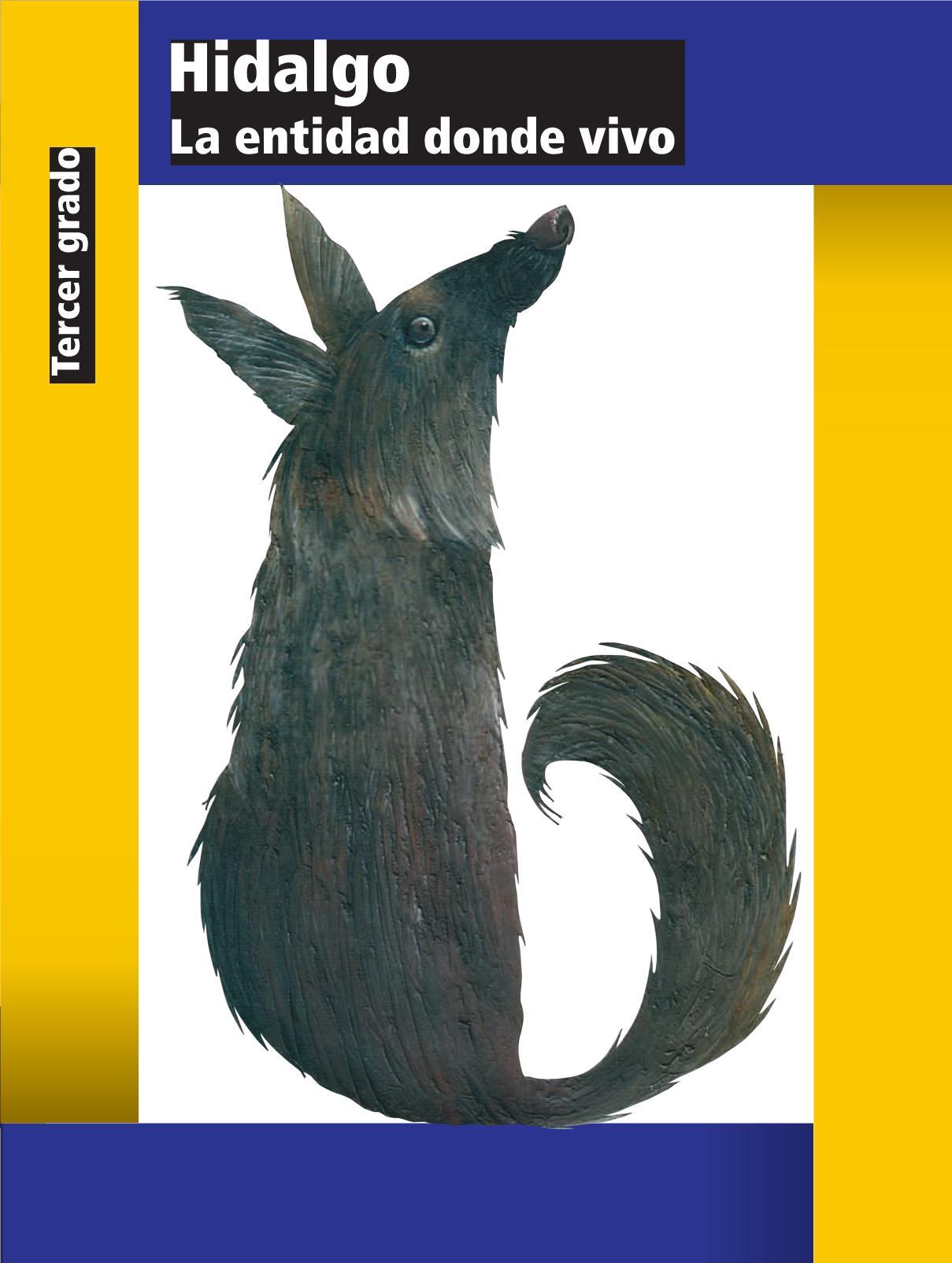 libro de hidalgo de tercer grado de primaria pdf