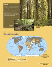 Libro Atlas de geografia del mundo quinto grado Página 95