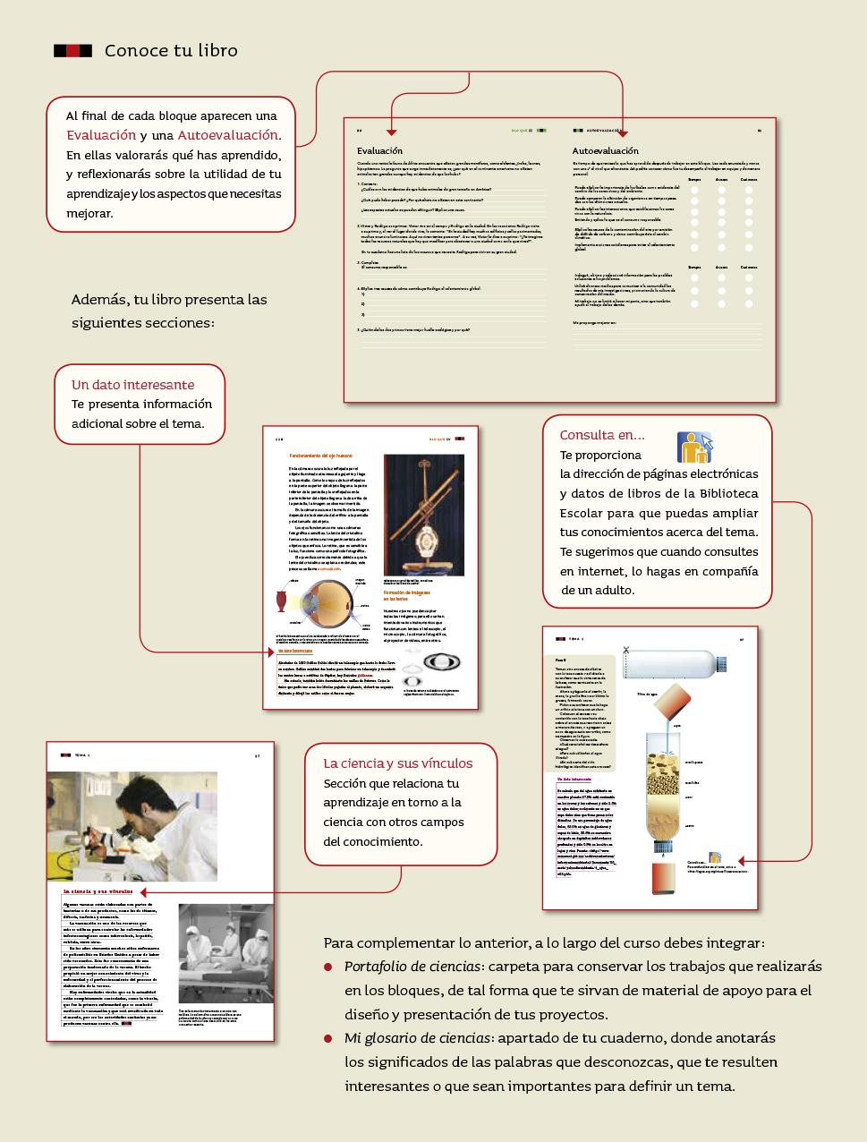 Ciencias Naturales sexto grado 2017-2018 - Página 5 - Libros de Texto Online