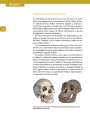 Libro Historia sexto grado Página 18