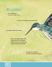 Libro Español libro de lectura tercero grado Página 24