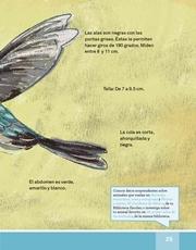 Libro Español libro de lectura tercero grado Página 25
