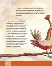 Libro Español libro de lectura tercero grado Página 28