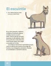 Libro Español libro de lectura tercero grado Página 48
