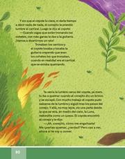 Libro Español libro de lectura tercero grado Página 80