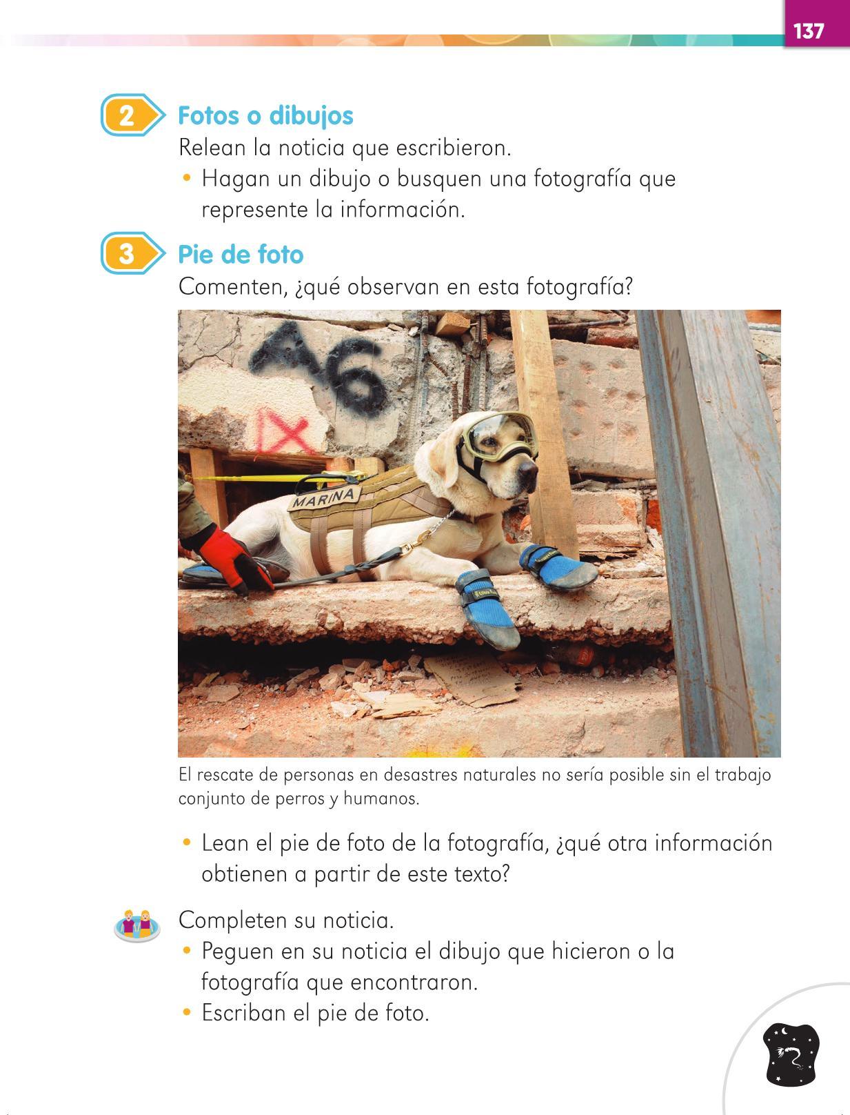 Lengua Materna Español Primer grado página 137